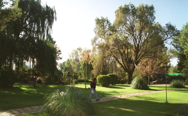 Archive image of the botanical garden of Jumilla.